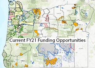 Current FY21 Funding Opportunities