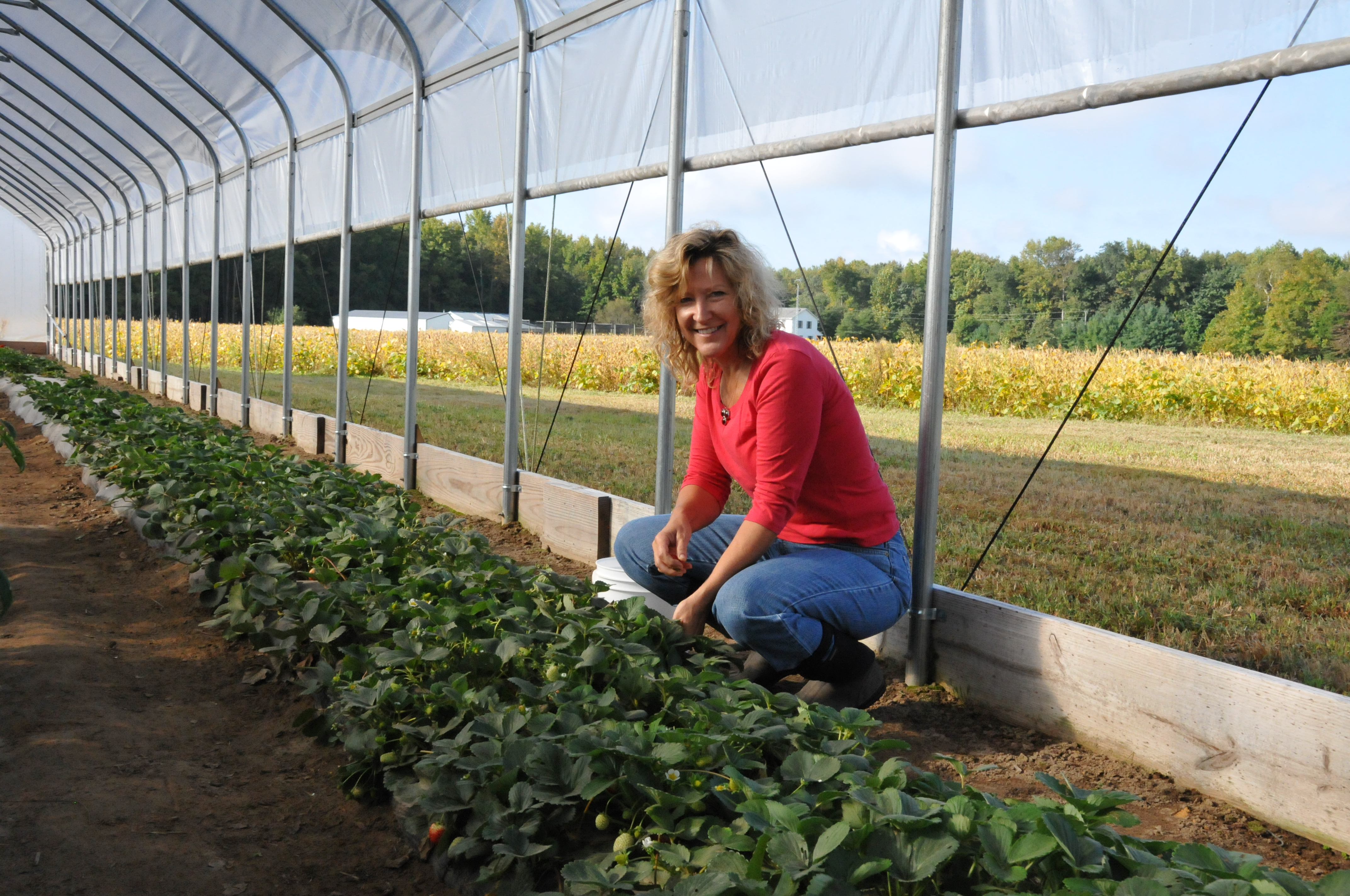 Kent County farmer Mary Brown utilizes a seasonal high tunnel to extend growing season and improve plant and soil quality.