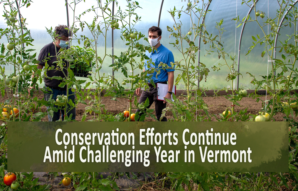 Conservation Efforts Continue Amid Challenging Year in Vermont