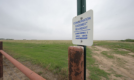 white metal sign that reads Conservation Easement Boundary