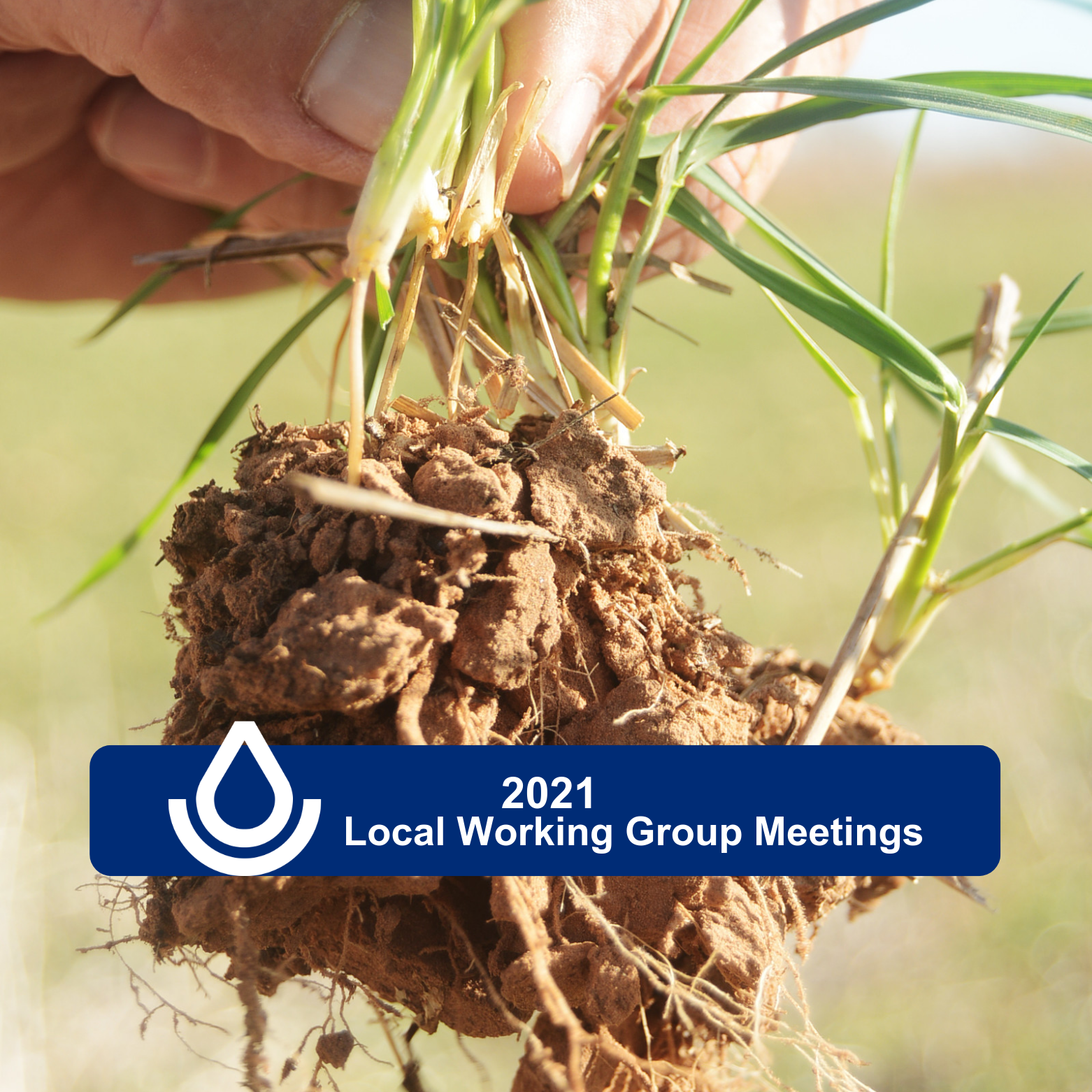 Photo of dirt with text that reads 2021 Local Working Groups
