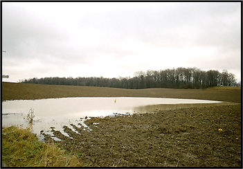 Photo of Maumee River-Western Lake Erie Basin shoreline. Click to go to the NRCS Conservation Webinars landing page.