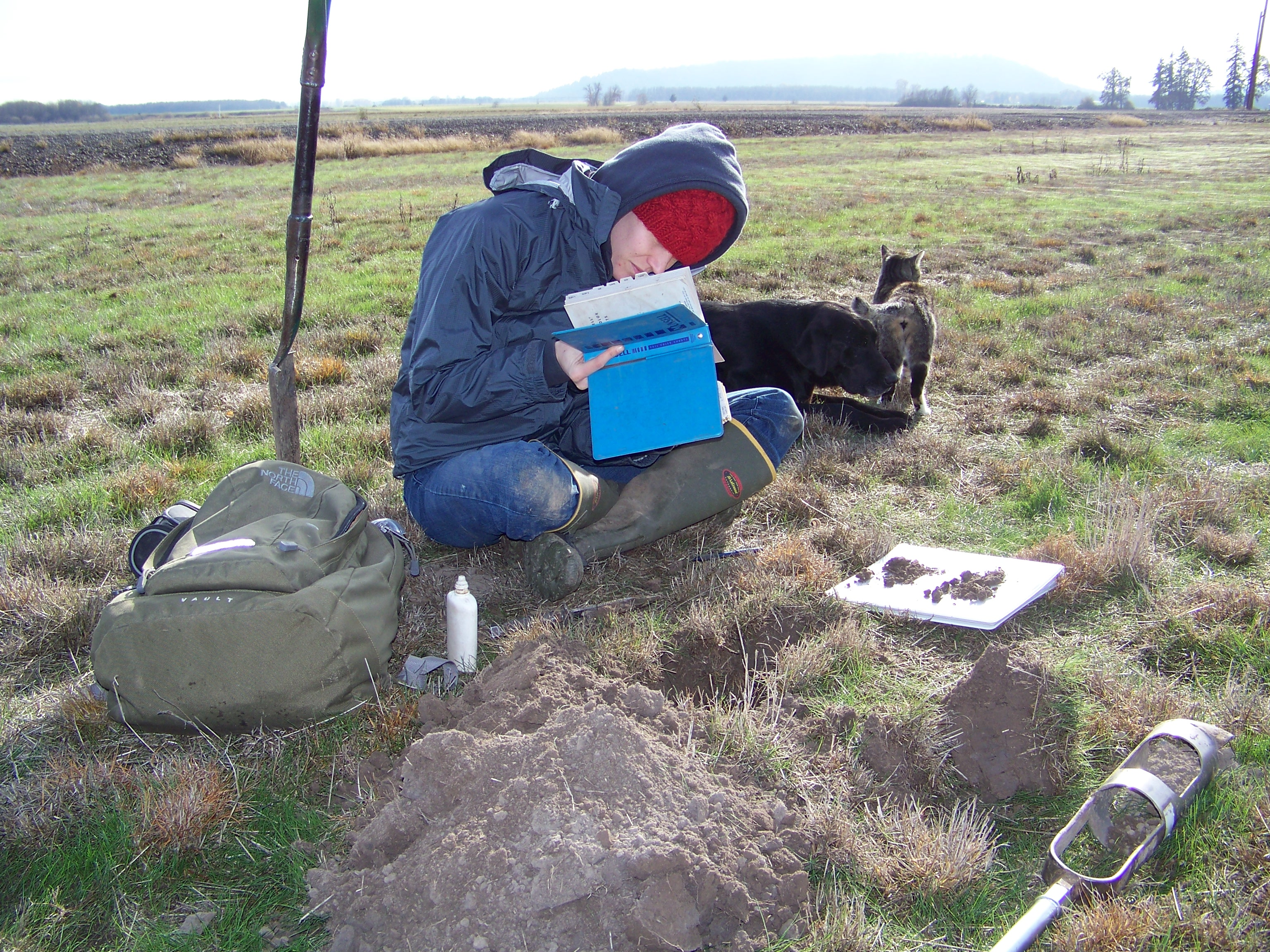 Soil scientist studies soil in field