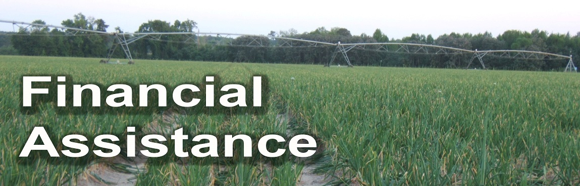 Financial Assistance Header. Picture of a irrigated vidalia onion field