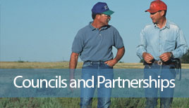gulf of mexico - councils and partnerships ad