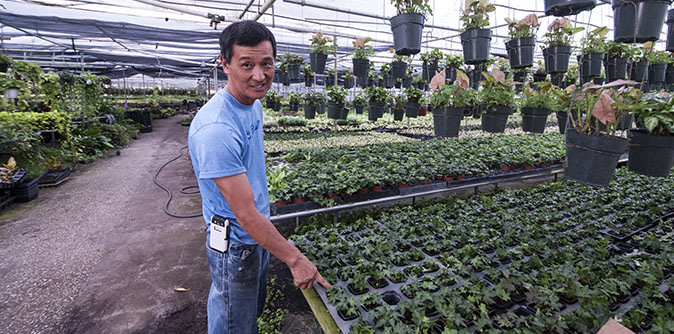 Paul Hahn Started The Nursery When He Was 22 To Help His Pas Learned