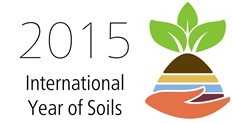 Logo for 2015 International Year of Soils. Depicts a hand holding soil and seedling.