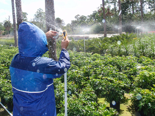 Nurseries can take advantage of the free irrigation efficiency test.