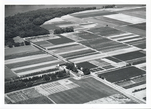 Aerial view of Manhattan SCS Nursery looking north, August 27, 1962
