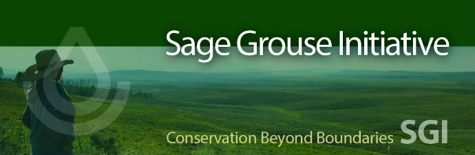 Sage Grouse Header