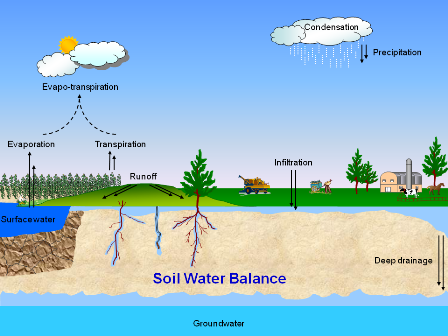 Soil and WAter Cycle