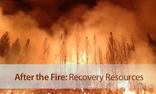 After the Fire: Recovery Resources
