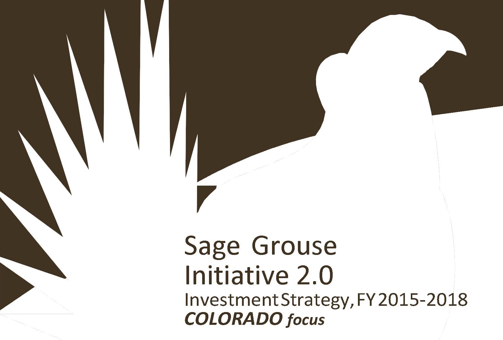 Sage Grouse CO
