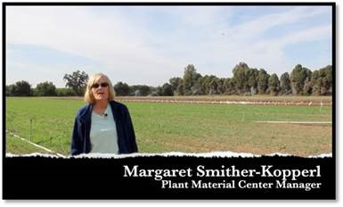 NRCS Lockeford Plant Materials Center Manager Margaret Smither-Kopperl discusses soil health at the
