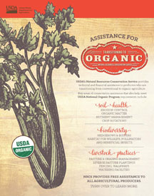 Assistance for Producers Transitioning to Organic Factsheet