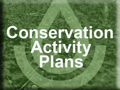Conservation Activity Plans