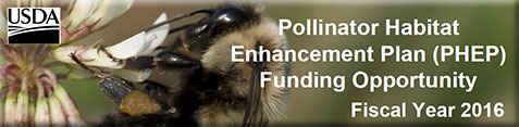 Pollinator Habitat Enhancement Plan (FY16)