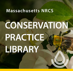 Image linking to the Massachusetts Conservation Practice Library main page