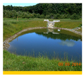 Small image of a pond linking to more information about this practice.