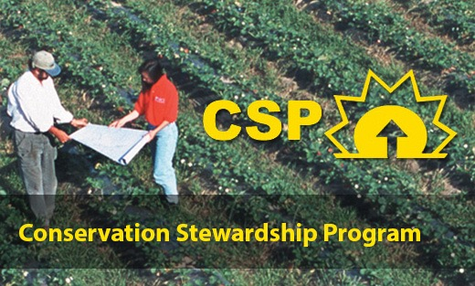 $150 Million for Producers to Improve Working Lands through Conservation Stewardship Program
