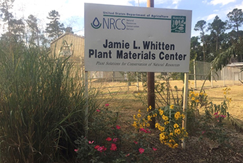 Jamie L. Whitten Plant Materials Center sign with blooming landscape in foreground.