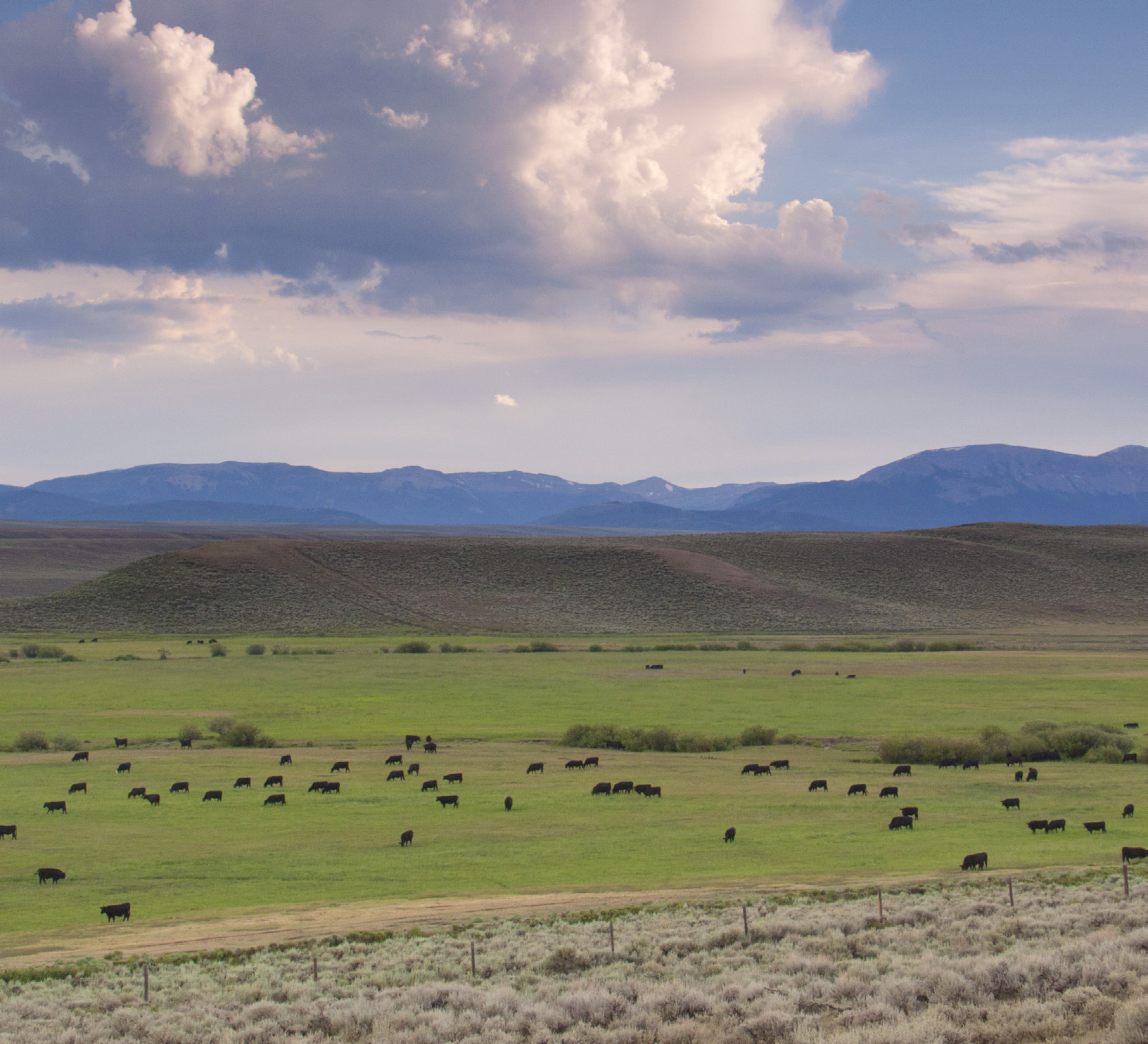 The Conservation Fund's Wyoming Sage Grouse Campaign has conserved 15 properties–like the Espenscheid family's ranch pictured here–in partnership with SGI and others.