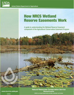 Thumbnail of How the Wetland Reserve Easements Work. Click on image to view document.