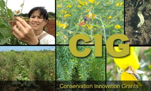 Agriculture Secretary Tom Vilsack has announced the availability of up to $20 million in competitive grants through the Conservation Innovation Grants (CIG) program.