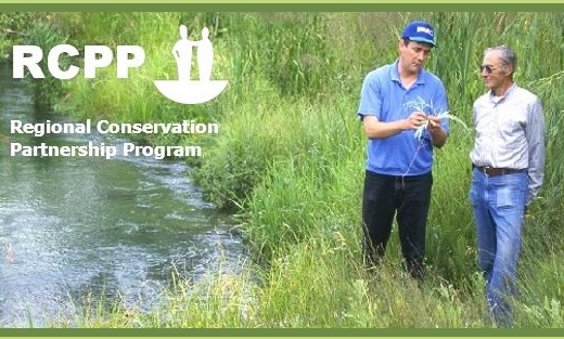 Resource Conservation Partnership Program RCPP