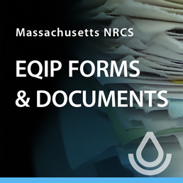 Ad image linking to Massachusetts Forms and Documents for EQIP