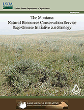 Download Montana NRCS SGI 2 Strategy