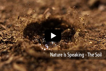 Nature Is Speaking - The Soil