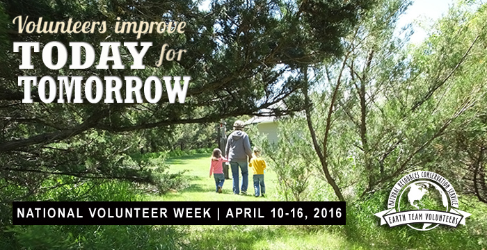 Volunteer Week Banner