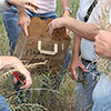 Forage samples were clipped, air-dried and weighed to determine livestock carrying capacity.