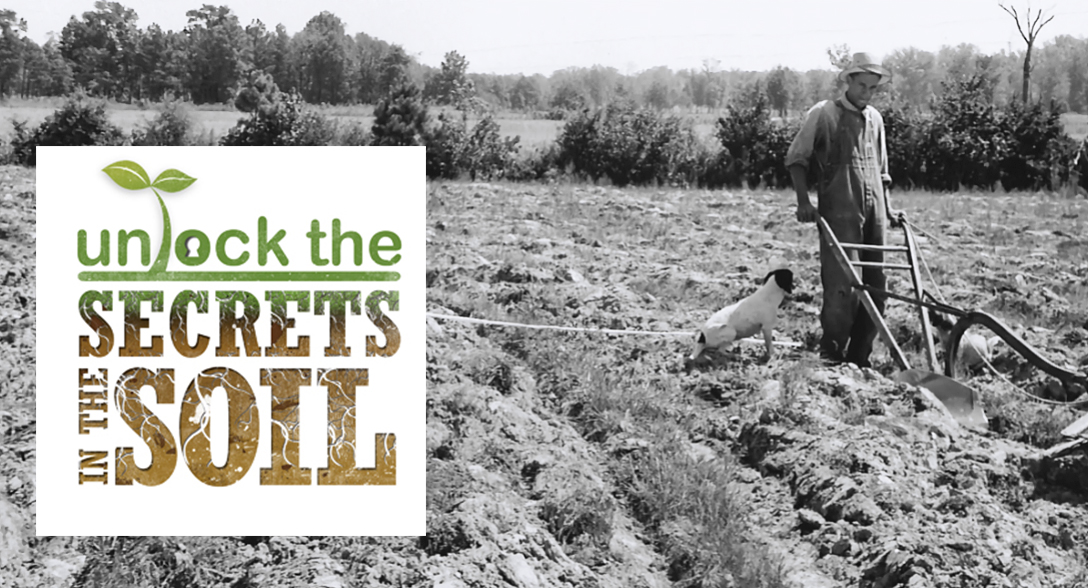 After the till is gone: Using no-till to improve soil health