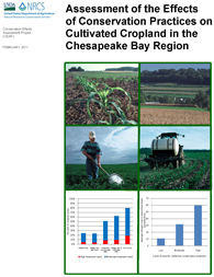 Chesapeake Bay Report cover image