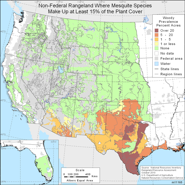 Map showing Percent non-Federal rangeland where mesquite species are present comprise at least 15% of the plant cover