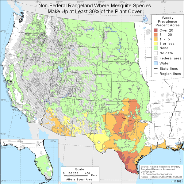 Map showing Percent non-Federal rangeland where mesquite species are present comprise at least 30% of the plant cover