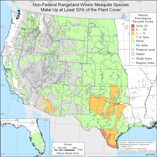 Map showing Percent non-Federal rangeland where mesquite species are present comprise at least 50% of the plant cover