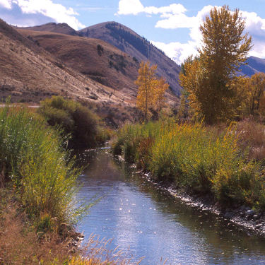 Lemhi River photo link to hydraulics & hydrology