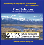 Cover of Plant Solutions 5-minute presentation