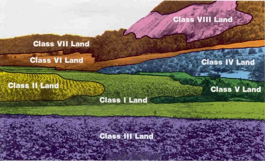 Diagram showing soil capability classifications written in Roman Numerals
