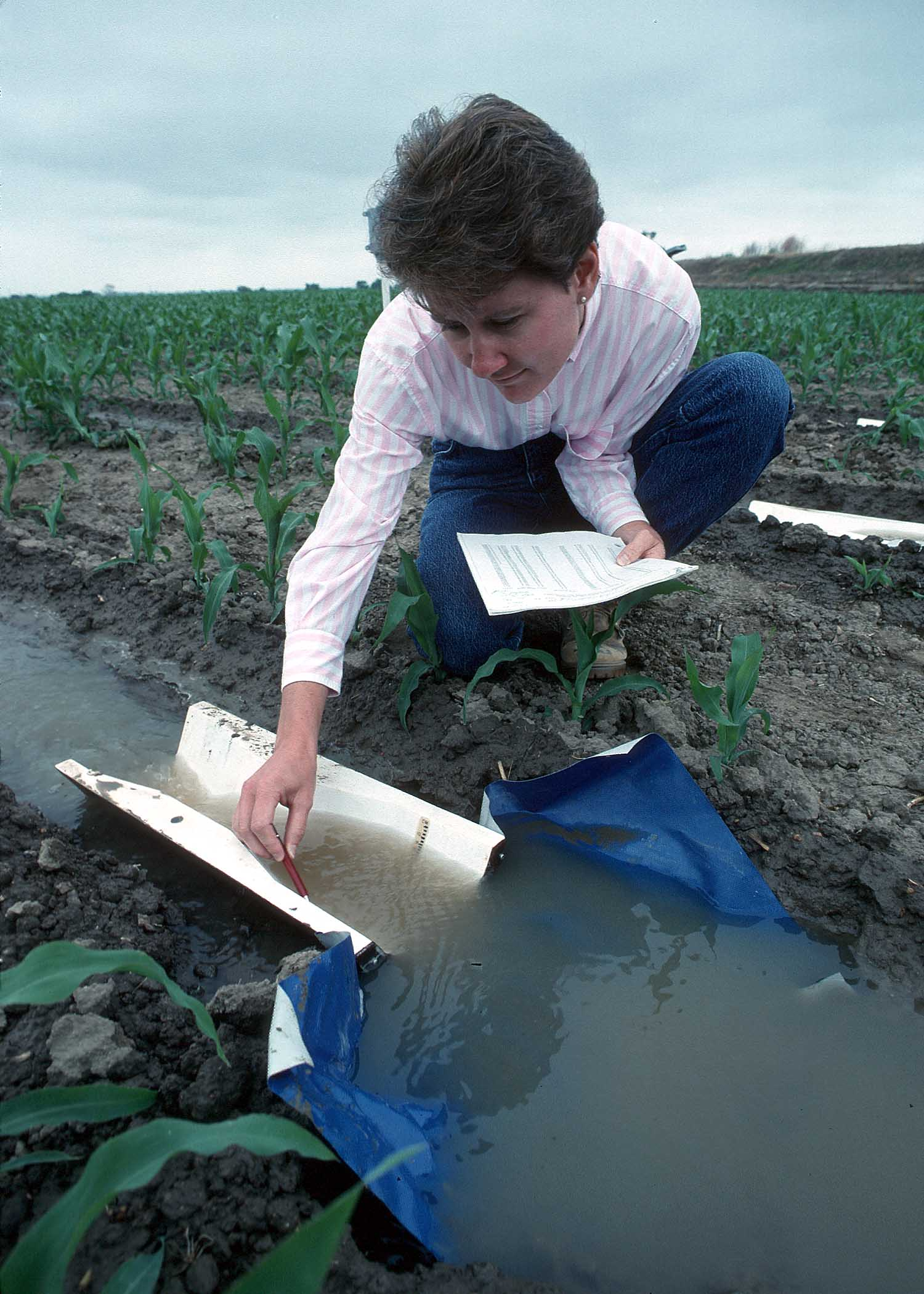 Lady sampling water flow through an aluminum weir in irrigated crop field.