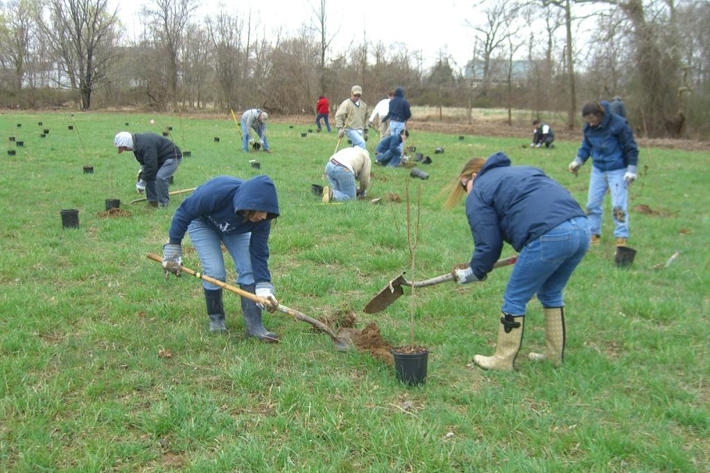 Earth Team volunteers planting trees in Riperian Buffer