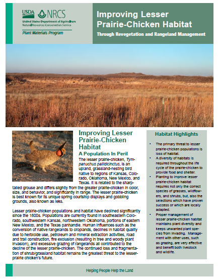 Click to download Improving Lesser Prairie-Chicken Habitat publication