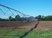 Irrigation on the Thaggard Farm in Georgia.