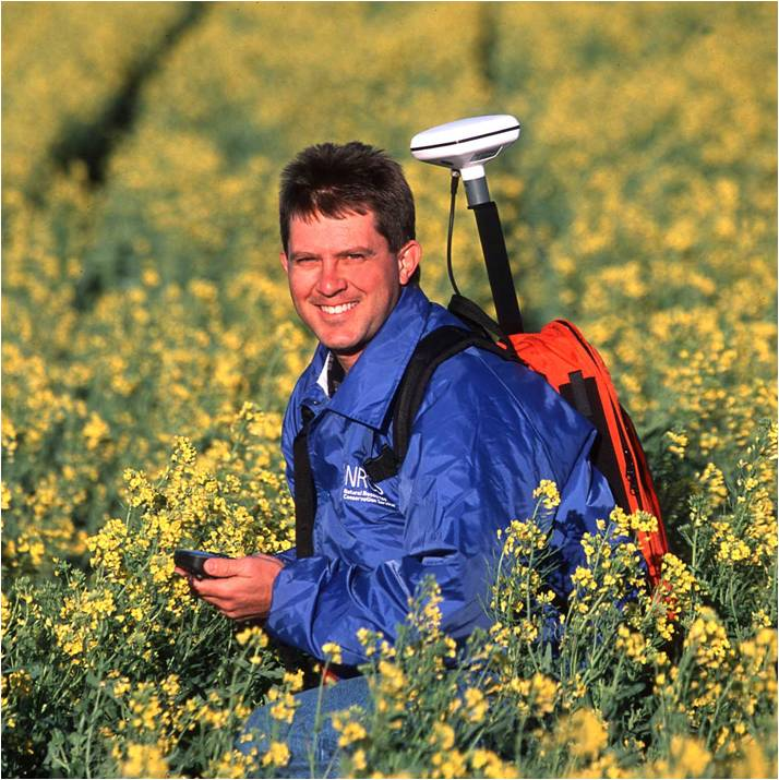 NRCS field personnel in a field of yellow flowers