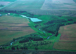 picture from the air of buffer,conservation tillage wildlife habitat in west central Iowa farm