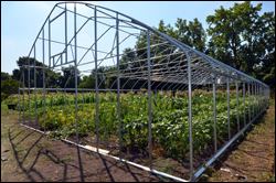 A polyethylene cover will be added to this high tunnel to provide a warmer climate for plants.