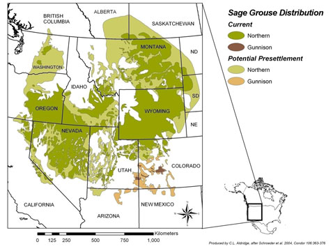 Map showing distribution of sage grouse in North Dakota, Montana, South Dakota, Wyoming, Idaho, Washington, Oregon, California, Nevada, Utah, and Colorado.
